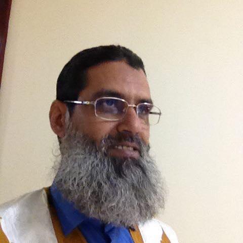 محمد سالم بن دودو