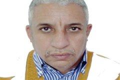 المختار ولد داهي، سفير سابق
